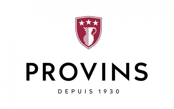 provins-new-2016